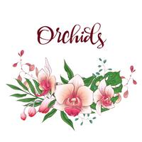 Floral design ram. Orchid, eukalyptus, grönska. Bröllopskort.