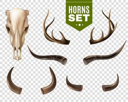 ko skalle och horn set vektor