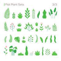 Vektorsatz verschiedene Blätter und Pflanzen in einem flachen Stil. Pflanzen isoliert auf weißem Hintergrund.