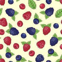 Seamless mönster av vilda bär. Vektor illustration