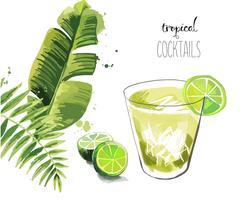 Cocktail. Sommar tropisk cocktail bakgrund med palmblad.