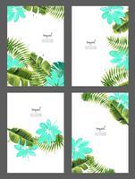 Set med bakgrunder med tropiska löv. vektor