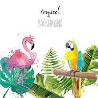 Schöner Hintergrund mit Papagei und Flamingo.