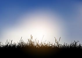 Silhuett av gräsbevuxen landskap mot blå himmel