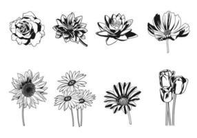 Schwarzweiss-Blumenvektor-Satz