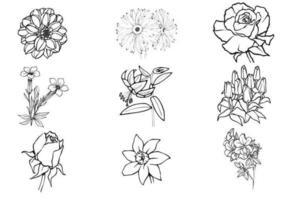 Handgezeichneter Blumen-Vektor-Pack vektor