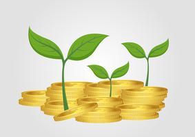 Affärsidé, växande träd från hög med guldmynt