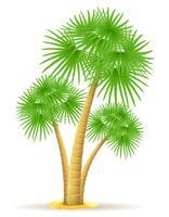 Palme-Vektor-Illustration
