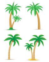 palm tropisk träd uppsättning ikoner vektor illustration