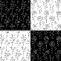 svartvita handdragen botaniska mönster vektor