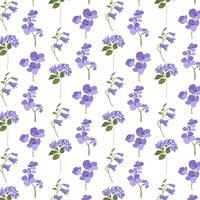 Lavendel lila botanisch auf weiß vektor