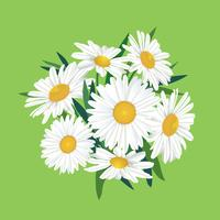Blombukett. Blomram. Blomstra hälsningskort. Blommande blommor isolerade på bakgrunden vektor