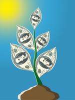 växt från hundra dollar sedlar vektor
