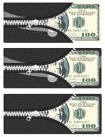 einhundert Dollar in Ihrer Brieftasche mit offenem Reißverschluss