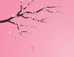 Plommonblomma eller körsbärsblomning på rosa bakgrund. vektor