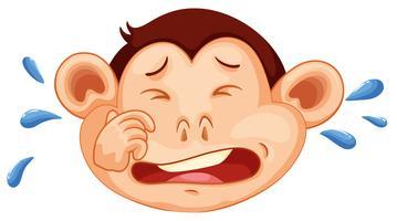 Ein weinendes Gesicht eines Affen