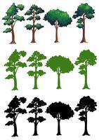 Set med olika träddesign