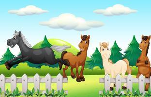 Fyra hästar som kör parken vektor