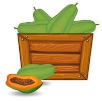 Papaya auf hölzernen Banner vektor