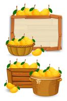 Mango i korgen på träbräda