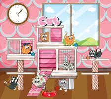 Viele Katzen in Käfig und Raum