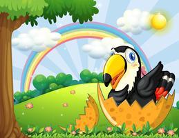 Tukanvogel-Brutei im Garten vektor