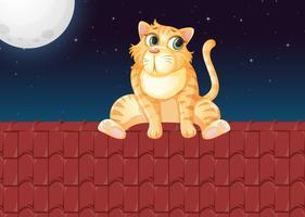 En katt på taket