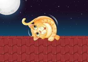 En katt som rullar på taket