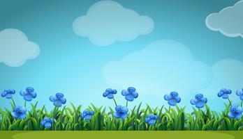 Scen med blå blommor i trädgården