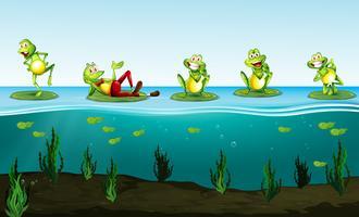 Fünf grüne Frösche im Teich vektor