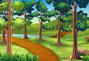 Scen med vandringsled i skogen