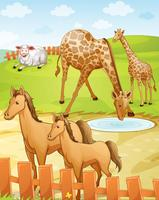 olika djur vektor