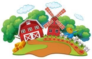 Gårdsplats med grönsaksträdgård