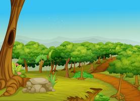 Härlig skogsvägen vektor