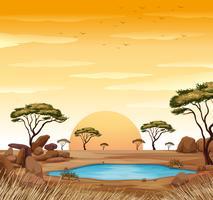 Szene mit Wasserstelle im Feld vektor
