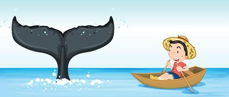 Buckelwal-Schwanz im Ozean