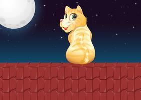 Katt på taket