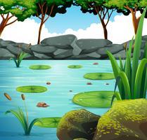 Szene mit Seerose im Teich vektor