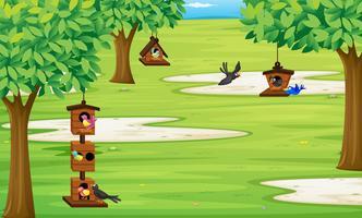Parkera med fåglar i fågelhuset på trädet vektor