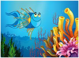 En blå fisk under havet nära korallrev