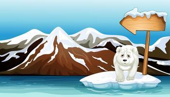 En isbjörn över isberget med skylt
