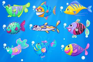 Neun bunte Fische unter dem Meer vektor