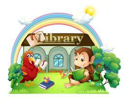 En apa och en papegojaavläsning framför biblioteket