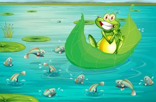 Frosch und Teich