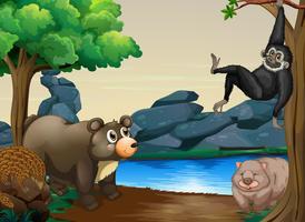 Tiere und Fluss vektor