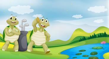 Två sköldpaddor nära floden vektor
