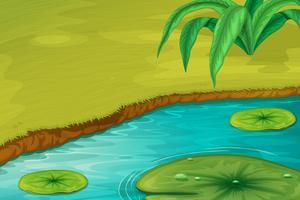 Kanten av en damm