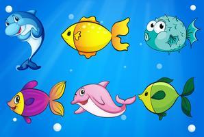 Sechs verschiedene Fische unter dem Meer