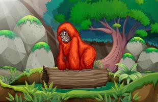Ein Gorilla im Dschungel vektor