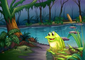 Ein Frosch über einem Stamm mit Algen